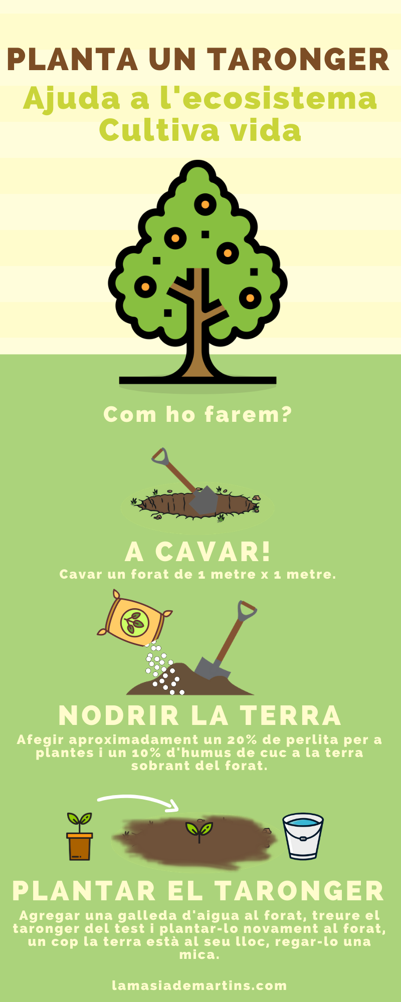 Plantar taronger